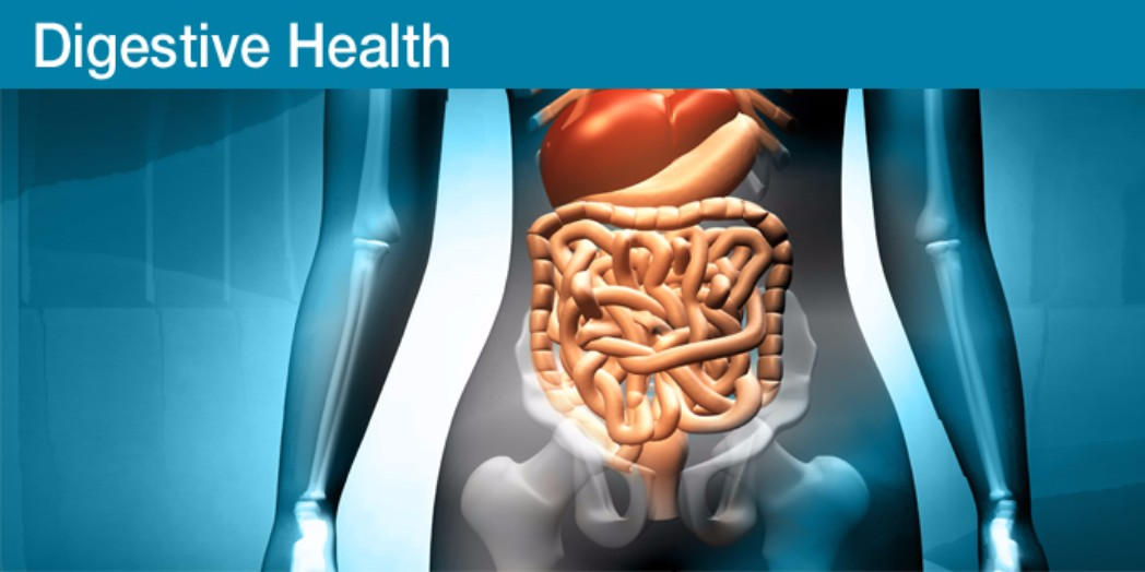digestive-health-2