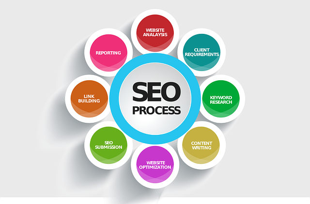 WHY IS SEO COLORADO IMPORTANT FOR MY BUSINESS?
