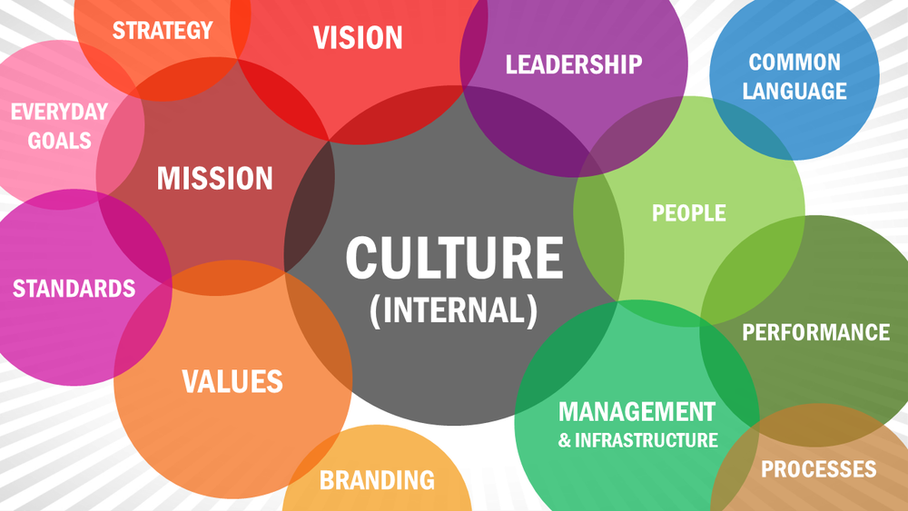How to Assess Company Culture