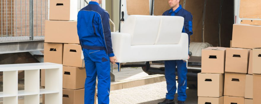 best moving companies edmonton