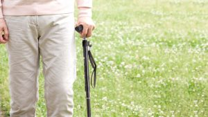 The Best Walking Canes and Sticks For All Walks of Life